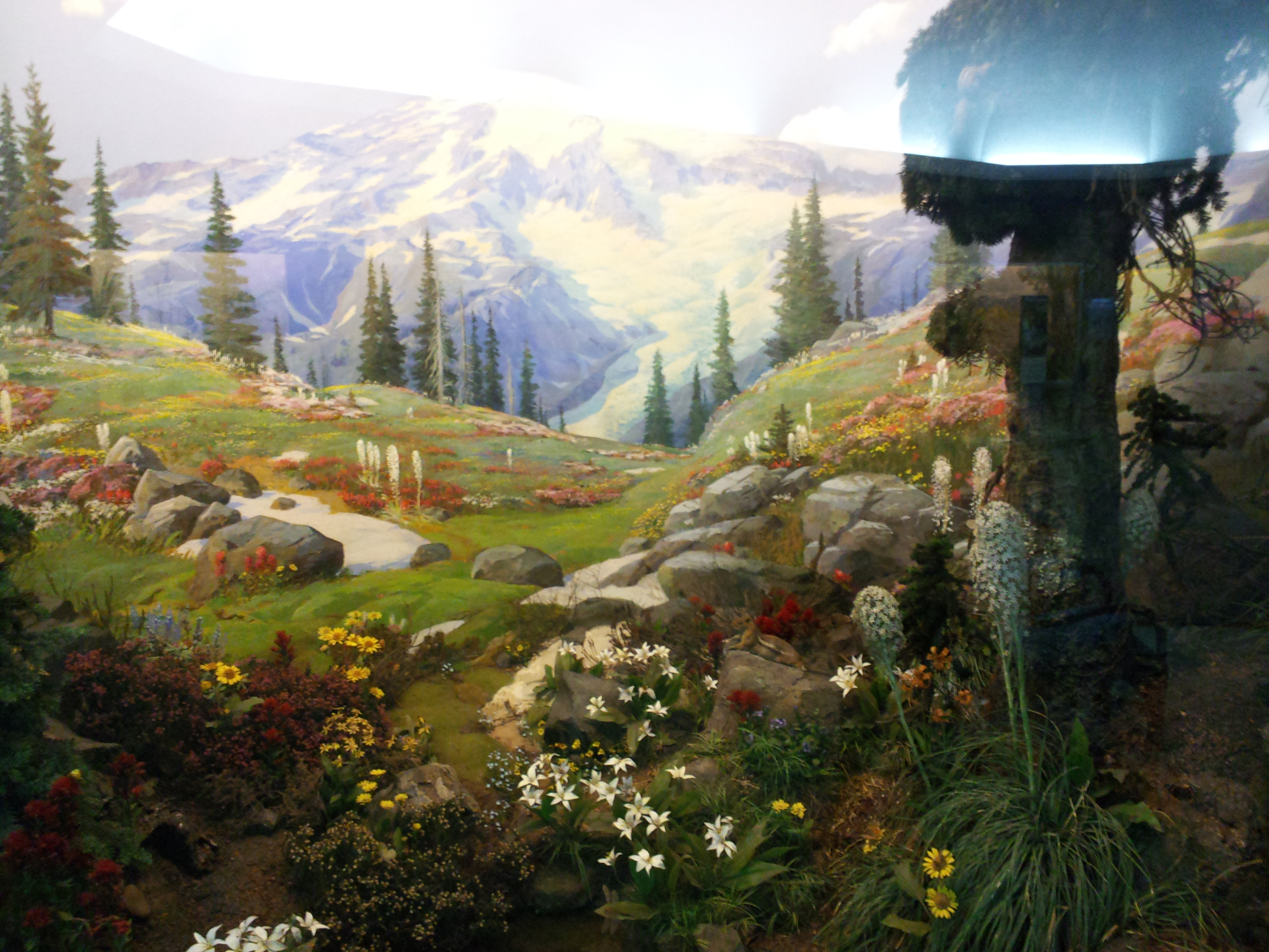 the botanical dioramas of the carnegie museum of natural